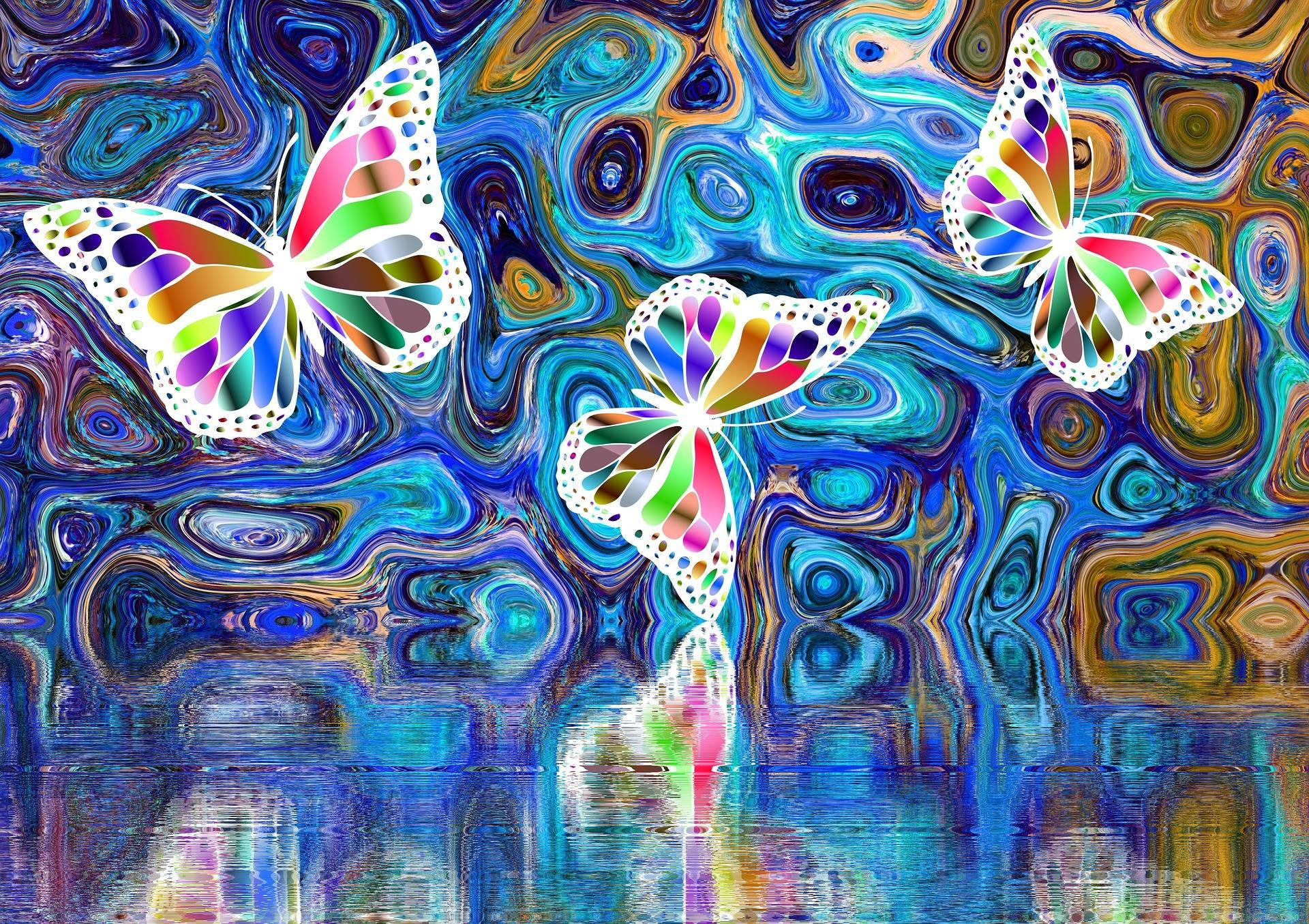 Metamorphose - von der Raupe zum Schmetterling - butterfly 2504361 1920