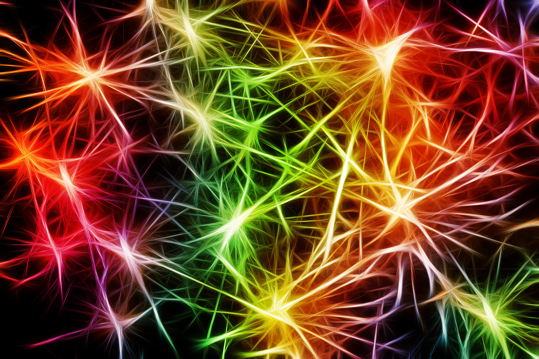 Vernetzung Synapsen Hochsensibel Florence Zumbihl